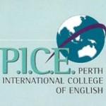 P.I.C.E.01
